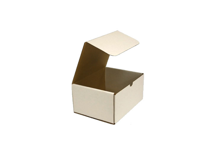 Temporary cardboard container urn